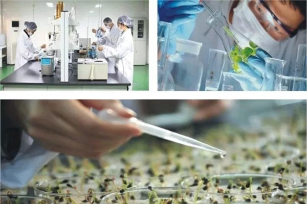 新时代大健康产业是什么?大健康产业发展前景怎么样?